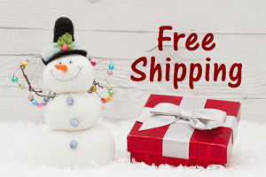 Essential Holiday Shipping Tips for Small Businesses